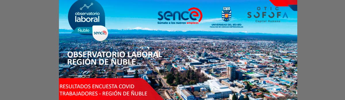 Consulta muestra los principales cambios causados por la pandemia en los trabajadores/as de Ñuble