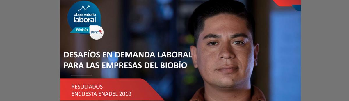 Observatorio Laboral Biobío dio a conocer resultados de encuesta Enadel 2019